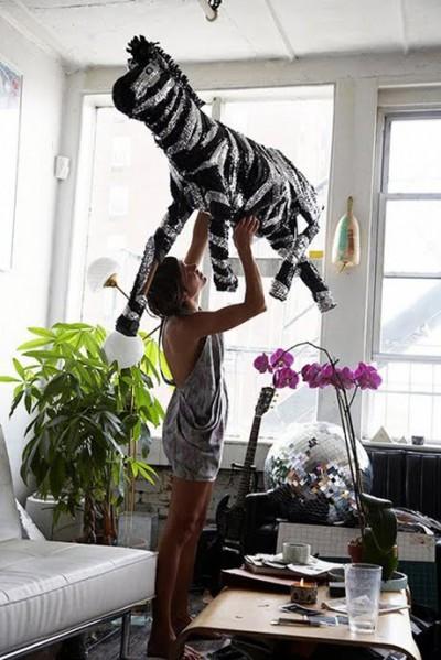 zebra pinatapinterest
